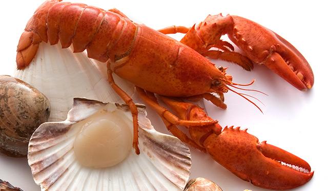 Lobster_thumb
