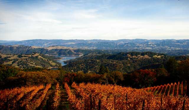 Sonoma County California Wine Country landscape