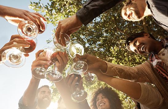Customised Wine Plans