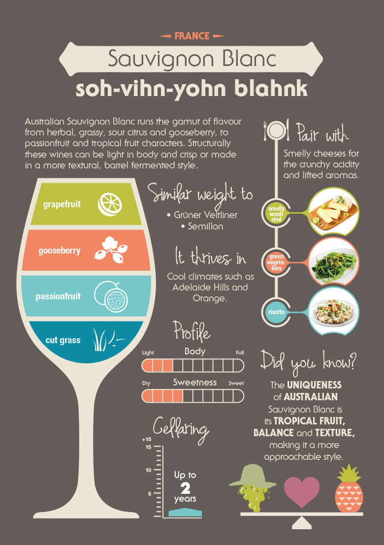 Know Your Variety Sauvignon Blanc Wine Selectors