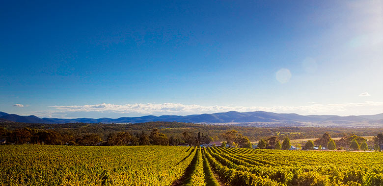 emerging australian wine regions making their mark
