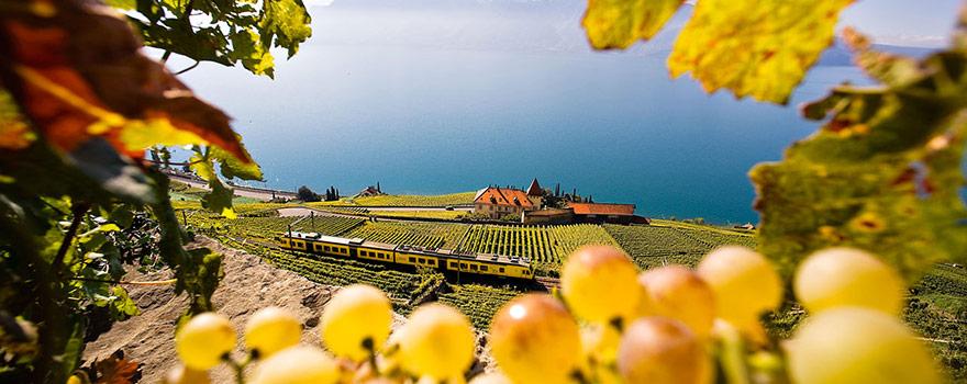Swisstourism