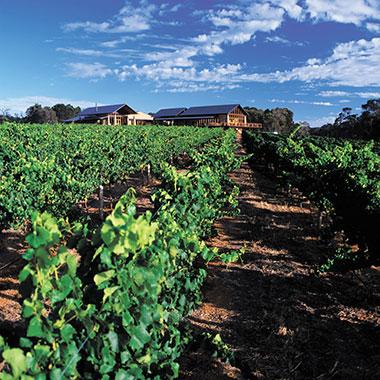 Watershed Wines