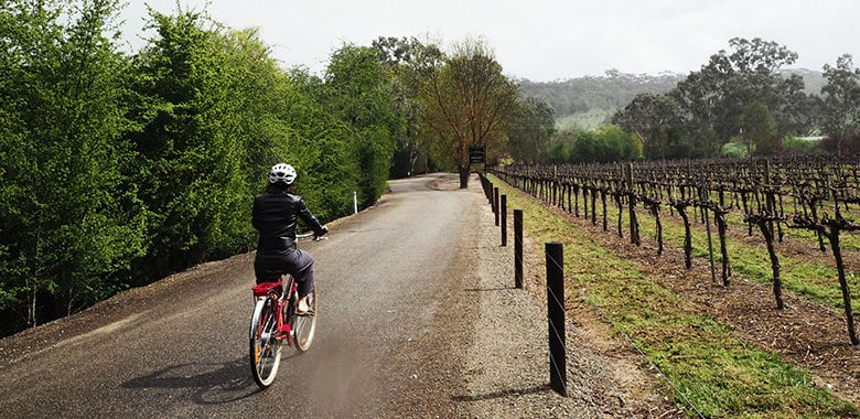 Clare Valley Riesling Trail cycling