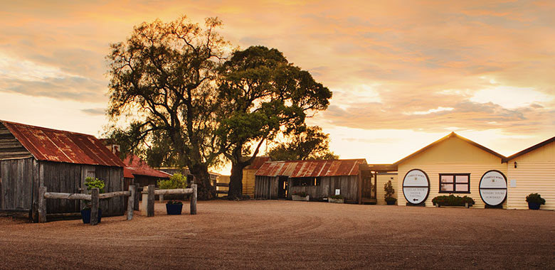 Tyrrells Hunter Valley Cellar Door