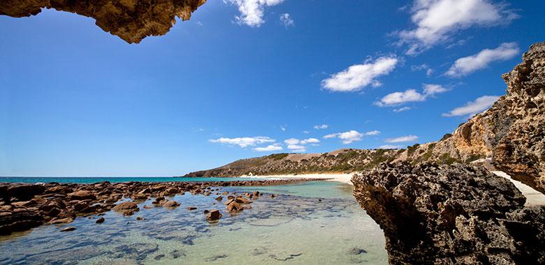 South Australia's Limestone Coast wine region
