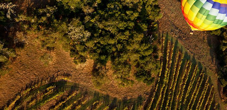5 Iconic Australian Wine Regions