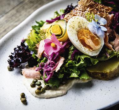 Discover local food around Tasmania with Avis