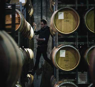 Stella Bella wines Margaret River