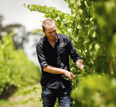 Four Winds Vineyard in Canberra