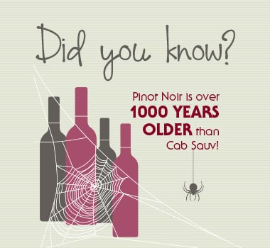 Facts on Pinot Noir