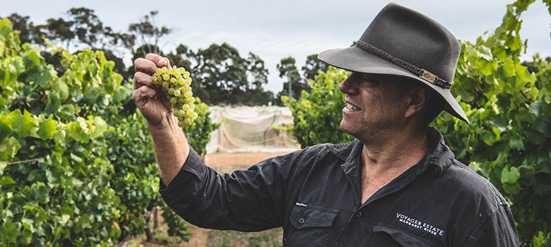 Meet Steve James of Voyager Estate