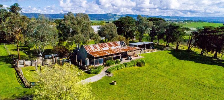 Best Yarra Valley Wineries and Cellar Doors, Yering Farm